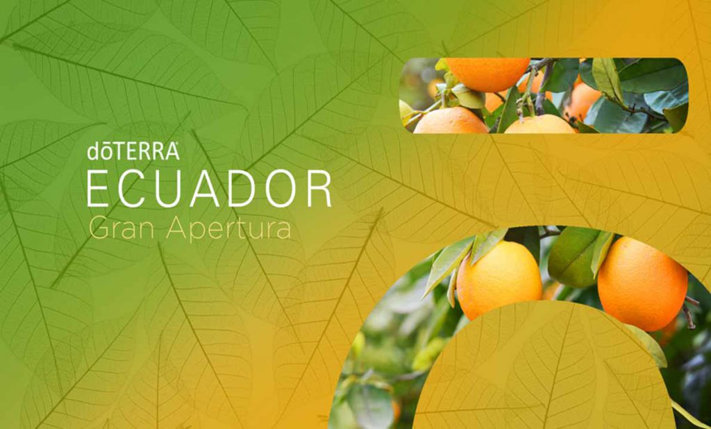 dōTERRA® ECUADOR: GUÍA DE PRODUCTOS, Procedimientos para el Distribuidor y Promociones