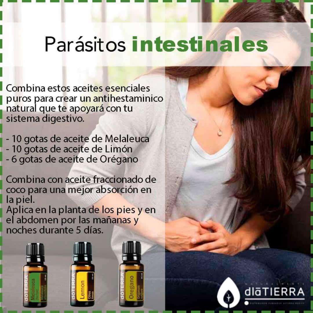 Aceites Esenciales para liberarse de Parásitos Intestinales