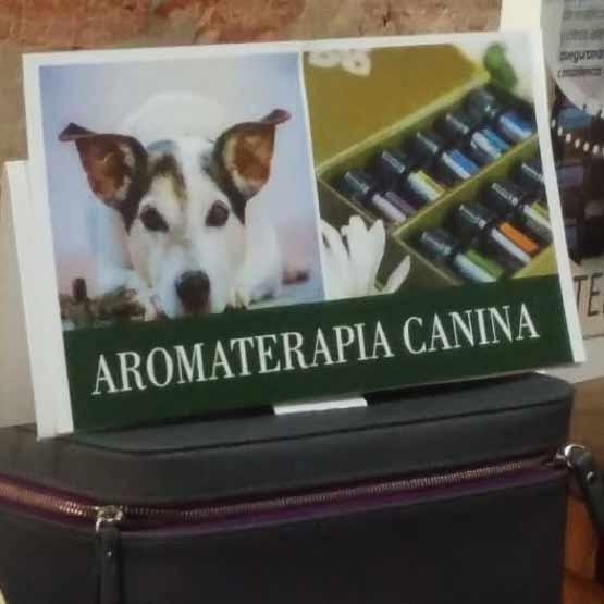 Aromaterapia-Canina-2